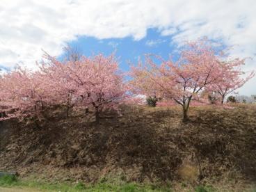 松ヶ崎城址公園の画像2
