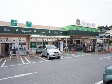 小田原百貨店 板橋店の画像1