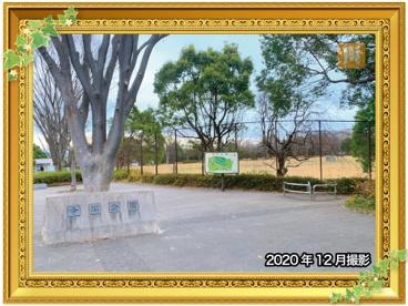 今川公園の画像1