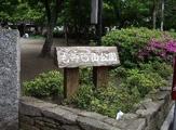 もみじ山公園
