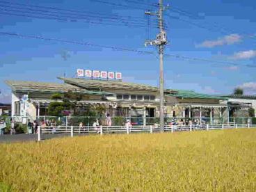 太田幼稚園の画像1