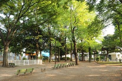 江原公園の画像1