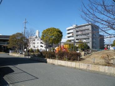 南浦公園の画像1