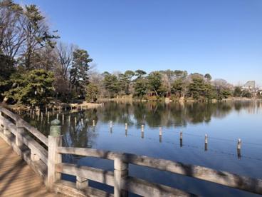 洗足池公園の画像1