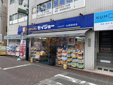 くすりセイジョー久が原駅前店の画像1