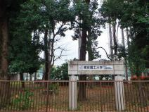 国立大学法人東京農工大学 府中キャンパス