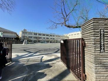 江古田小学校の画像1