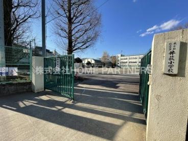 井荻小学校の画像1