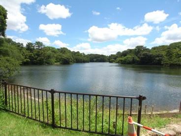 大池公園の画像1