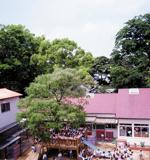 青葉幼稚園