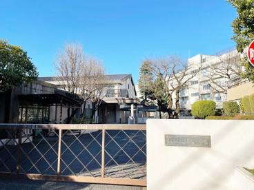 大泉学園中学校の画像1