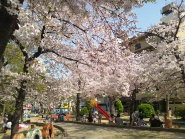 寺田町公園の画像1