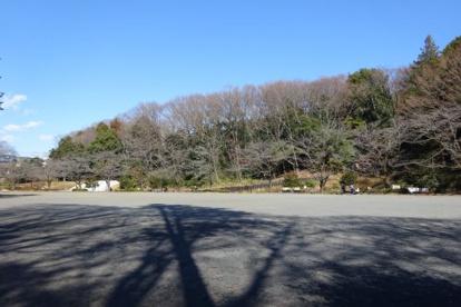 芹ヶ谷公園の画像1