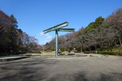 芹ヶ谷公園の画像3