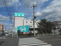 ニトリ 東大和店