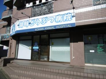 湖畔どうぶつ病院の画像1
