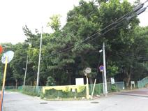 松が丘2丁目緑地