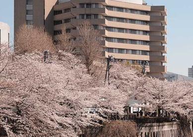 東京共済病院の画像1