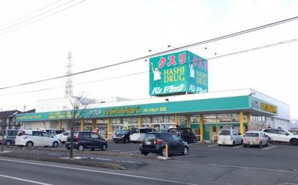ハシドラッグ笹谷店の画像1