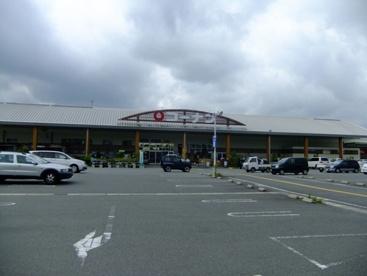 コーナン 篠山店の画像1