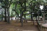 太子堂八幡 児童公園