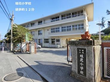 垣花小学校の画像1