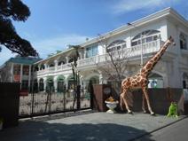 丸山幼稚園