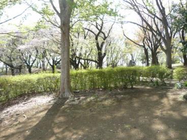 上仲原公園の画像2