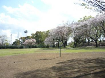 上仲原公園の画像3