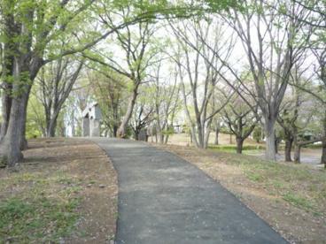 上仲原公園の画像5