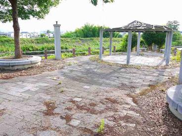河川公園の画像1