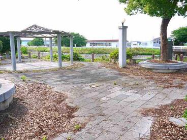 河川公園の画像2