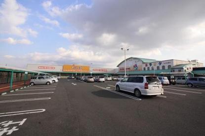 ダイソー  プライスカット大和小泉店の画像1