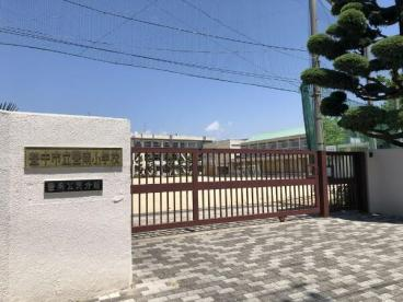 豊中市立豊南小学校の画像1