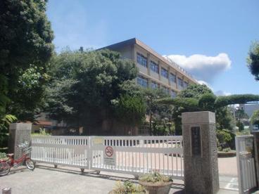 中洲小学校の画像1