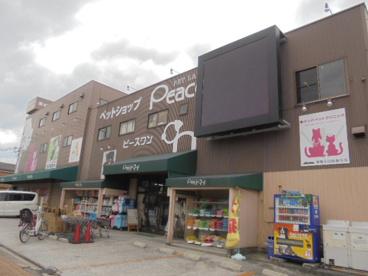 ペットランドピースワン 東住吉店の画像1