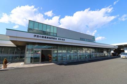 JA伊豆の国田中支店の画像1