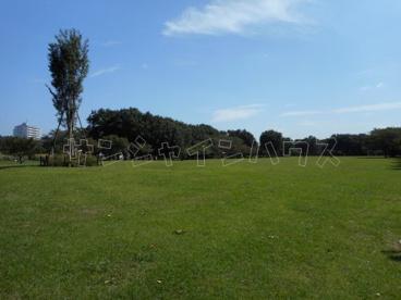 都立東村山中央公園の画像1