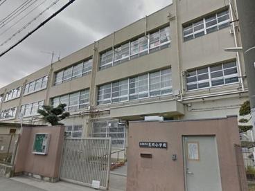 東大阪市立荒川小学校の画像1