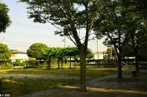 藤塚第2公園