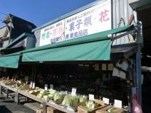 多摩川青果食品店