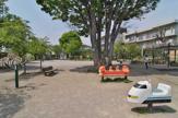 世田谷区立桜上水公園