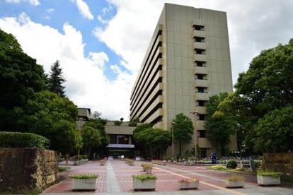 姫路市役所の画像1