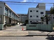 松戸市立新松戸南中学校