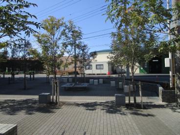 沼影2丁目第一公園の画像1