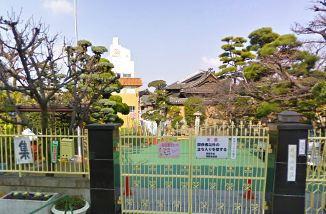 朝陽幼稚園の画像1