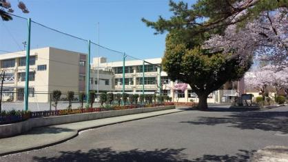 八坂小学校の画像1