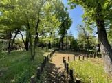 くりの木の森緑地