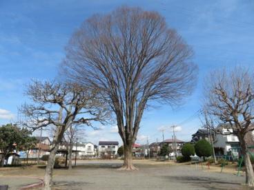 宝木団地児童公園の画像4