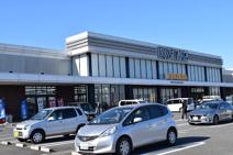 蔦屋書店 川島インター店